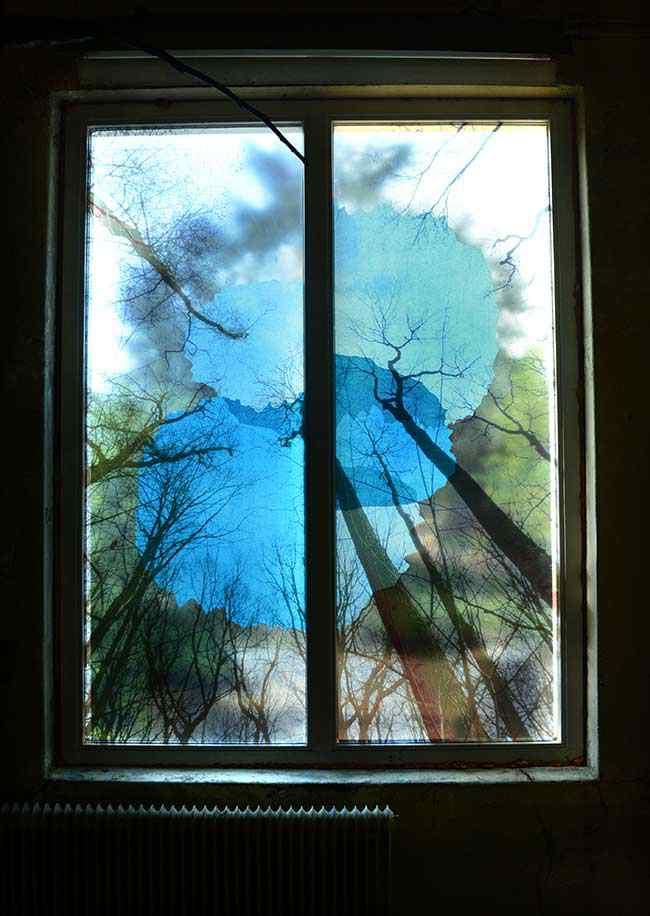bomenraam-blauw